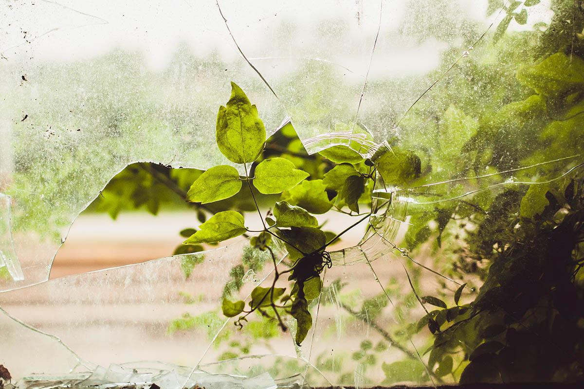 Sliacka photo overgrowth