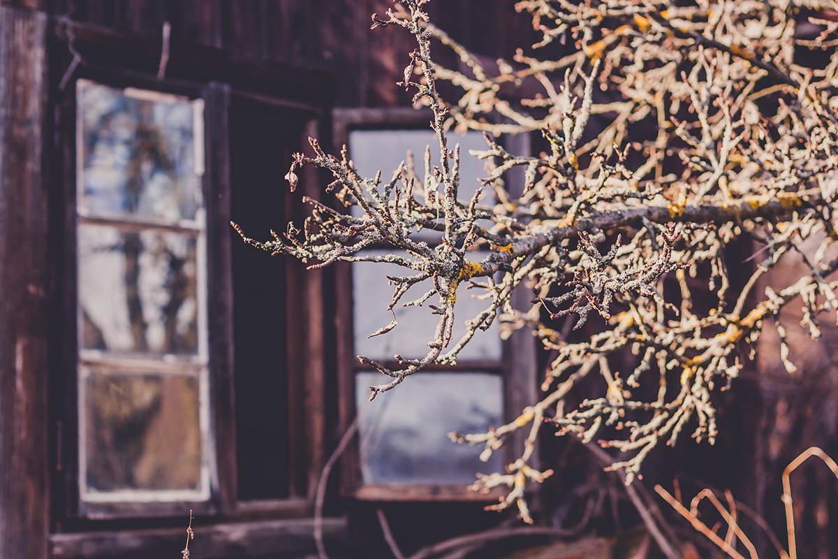Sliacka photo two-windows