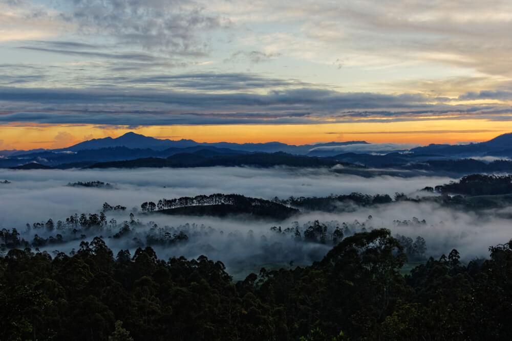 Soňa čermáková - Srí Lanka sa zobúdza