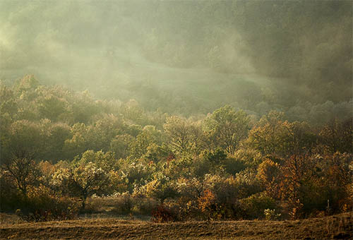Mirka Sliacka – Transilvánia